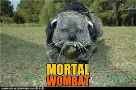 mortal womabat